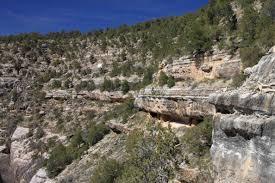 Numerous dwellings alongside the canyon