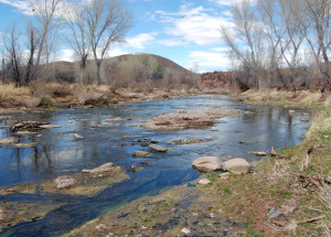 San Pedro River, near maker. Here the Battalion encamped before being charged by the wild bulls