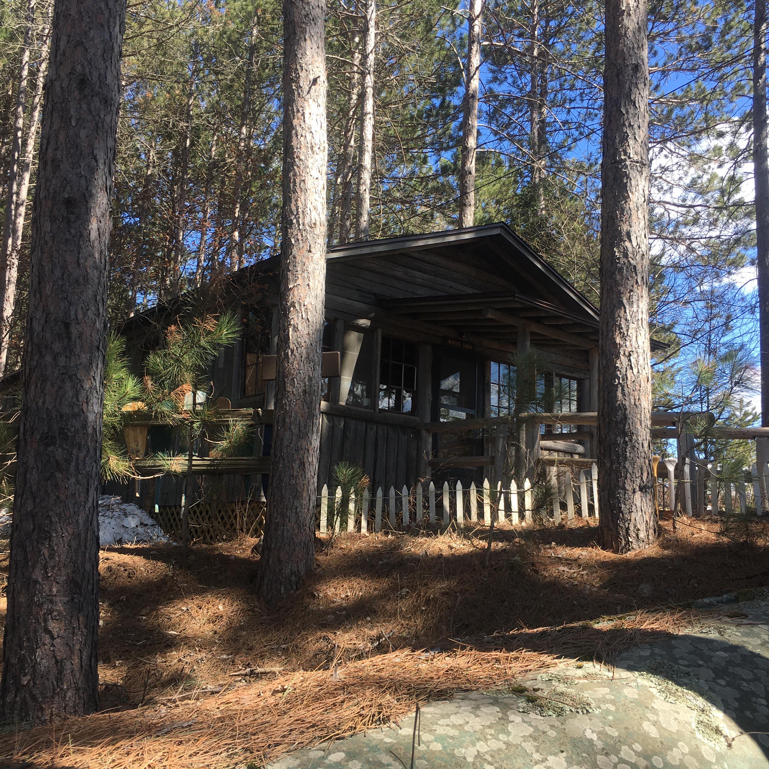 Winter Cabin North Side