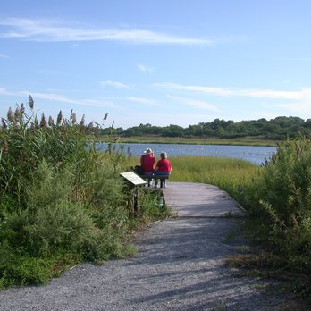 Bird watching is a favorite activity in Marine Park. Tours and information can be found at the Salt Marsh Nature Center.