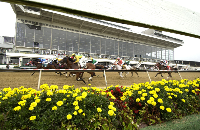 The race course is over 140 years old. It has hosted four triple crown champions.