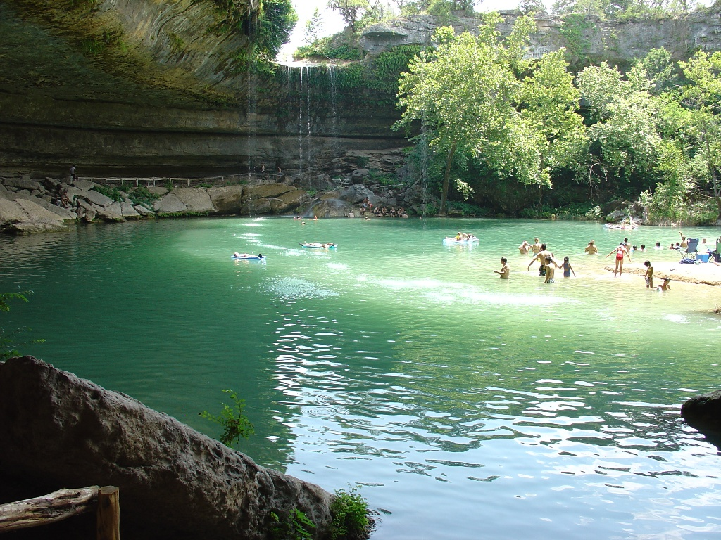 A large crowd of people swimming in the pool.