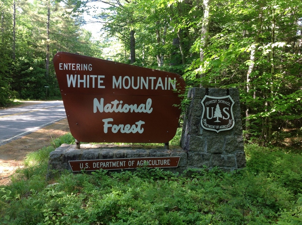 White Mountain National Forest