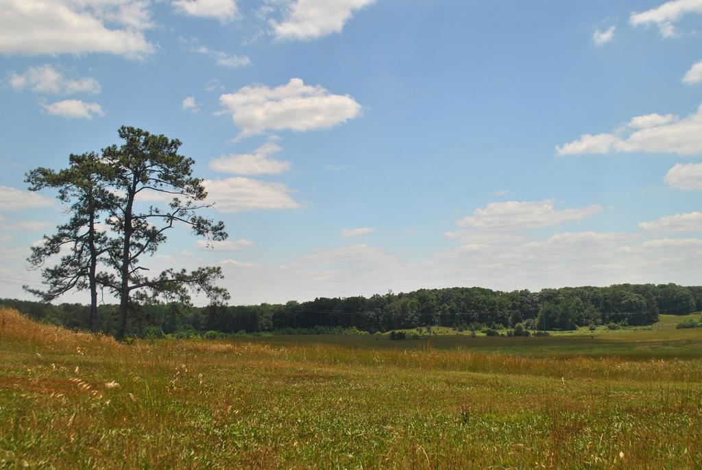 Nash Farm Battlefield