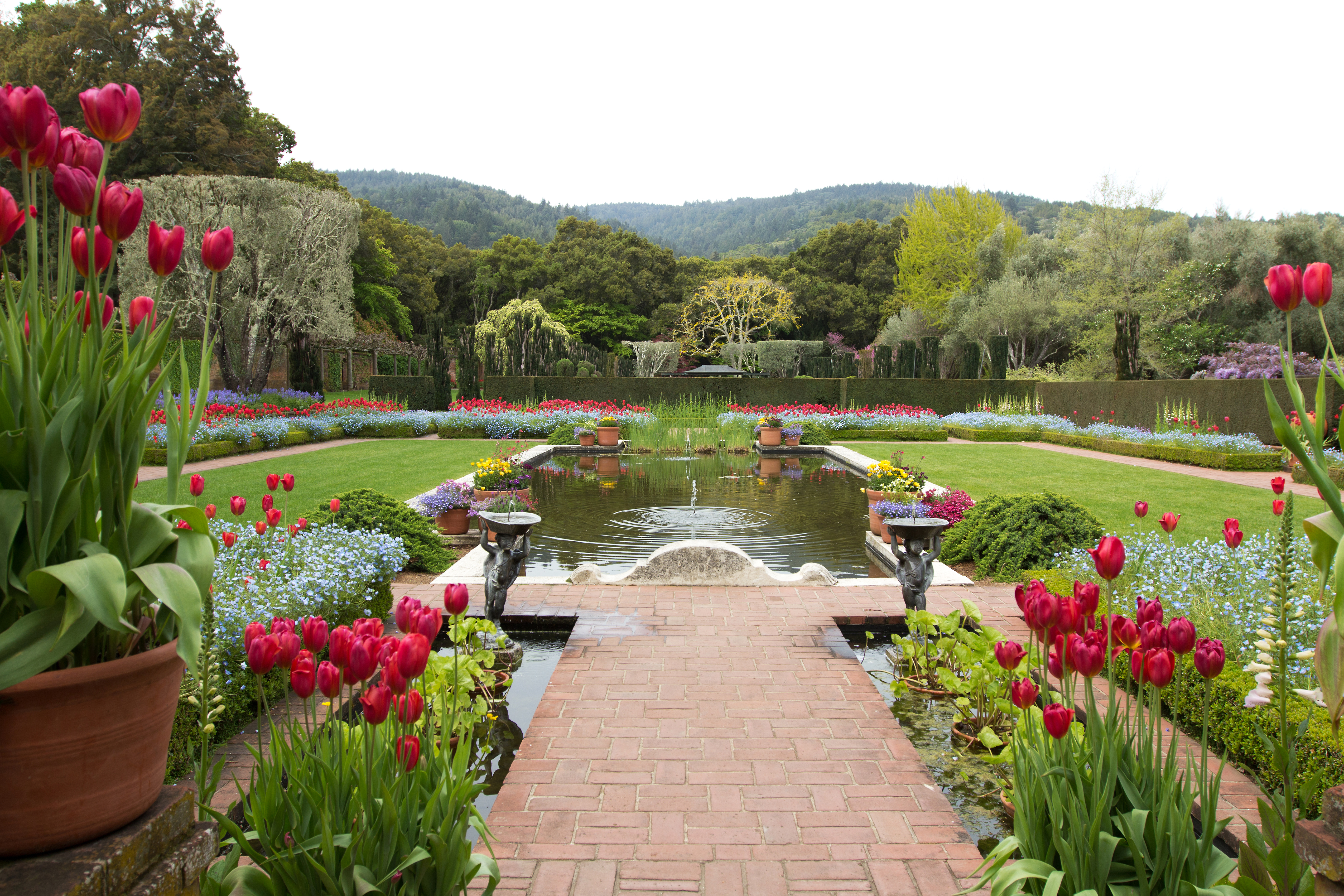 Gardens with reflecting pool and tulips in bloom.