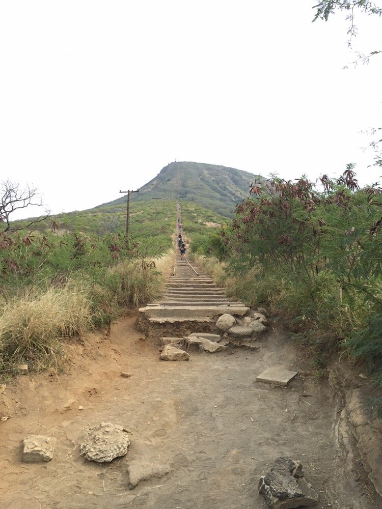 The bottom (start) to the top of Koko Head