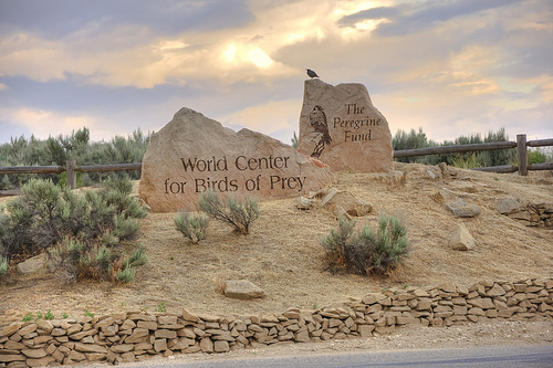 Entrance to the World Center For Birds of Prey