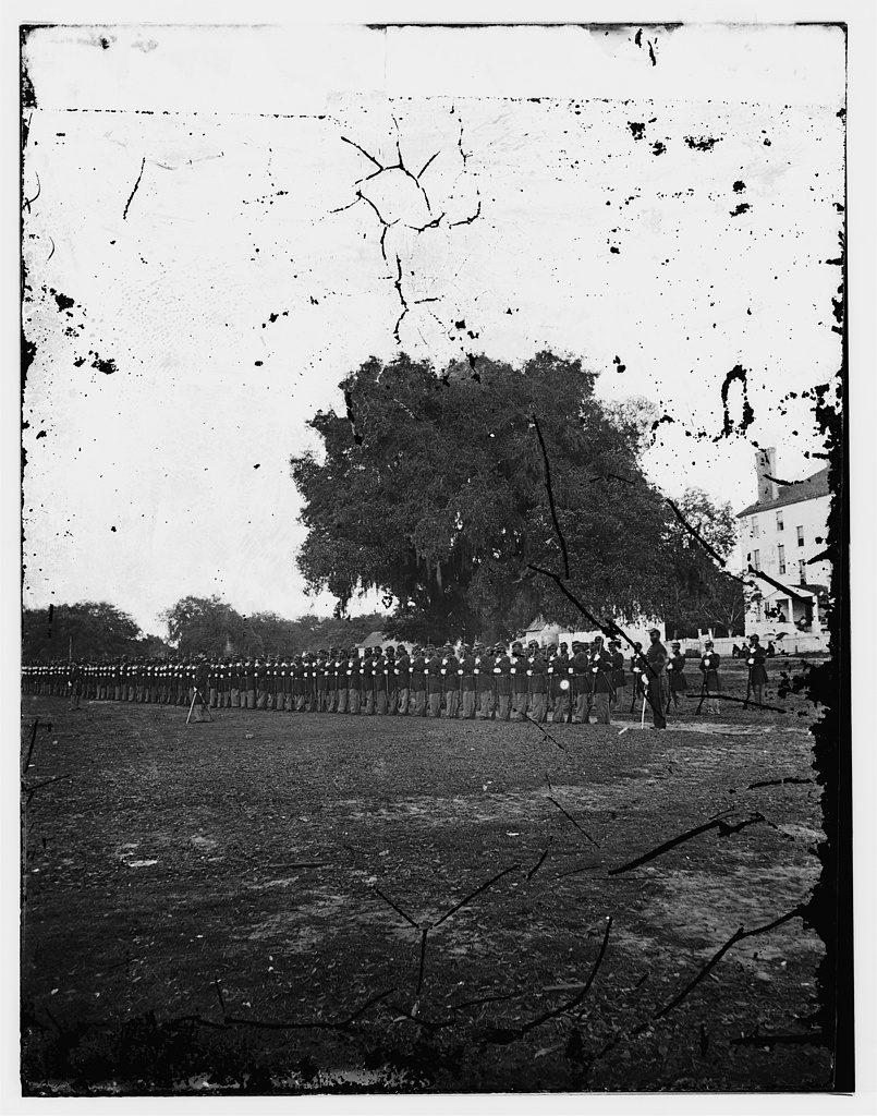 29th Regiment Connecticut Volunteers, Beaufort, South Carolina – Library of Congress, Prints and Photographs Division