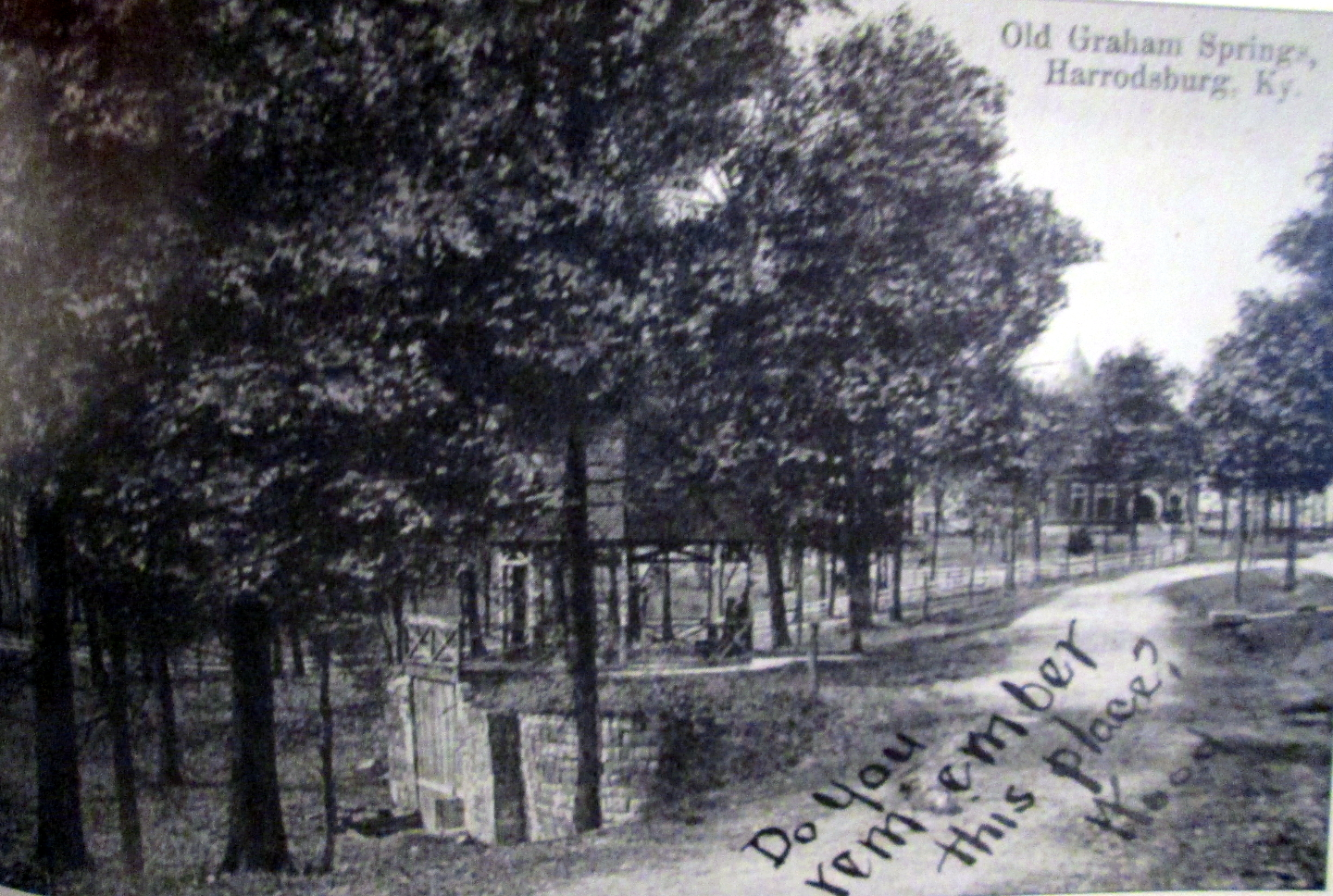 Postcard showing a view of the Graham Springs grounds with the springhouse in the foreground and the hotel visible through the tree line to the upper right (image from Armstrong 2013:81).