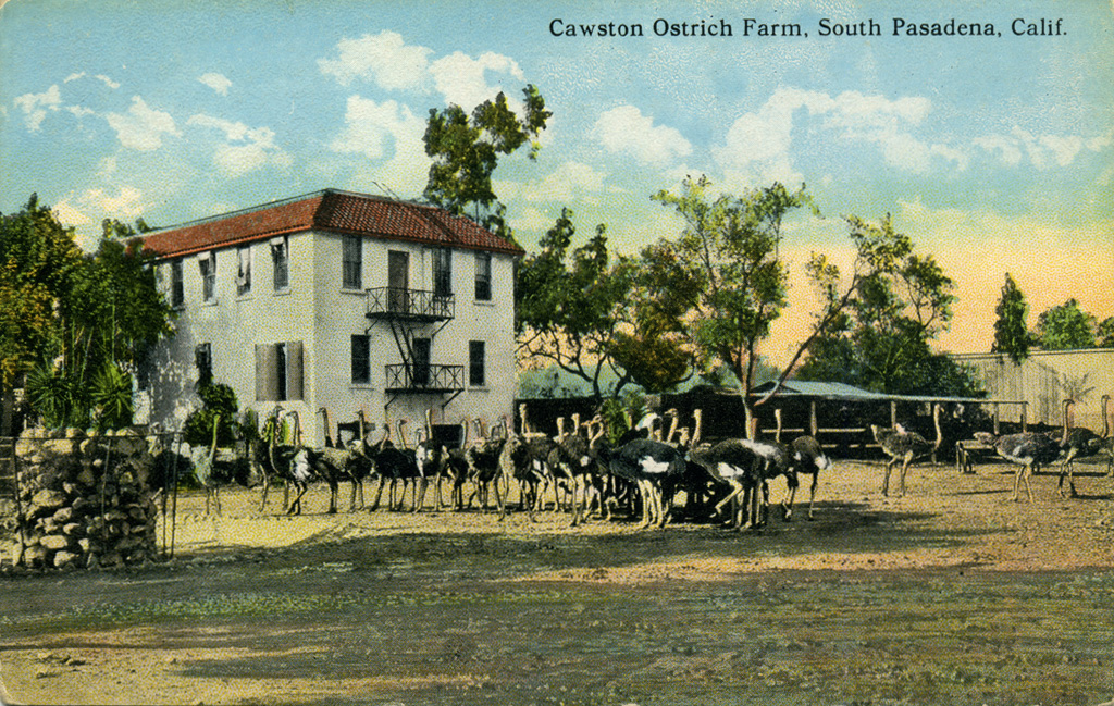 View of Cawston's Farm (www.image-archeology.com)