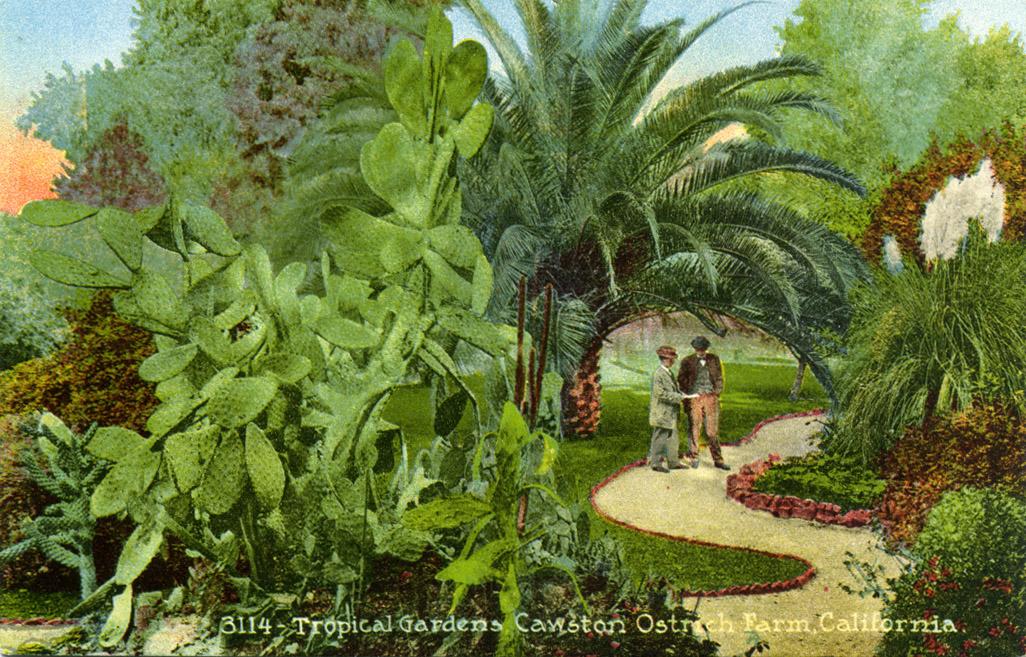 The tropical gardens (www.image-archeology.com)