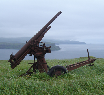 The largest intact collection of Japanese artillery pieces in the world is on Kiska Island. Remnants of Japanese coastal defenses are found on the Kiska and Attu portions of the Monument.