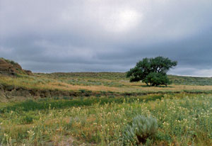 The site of the Sand Creek Massacre