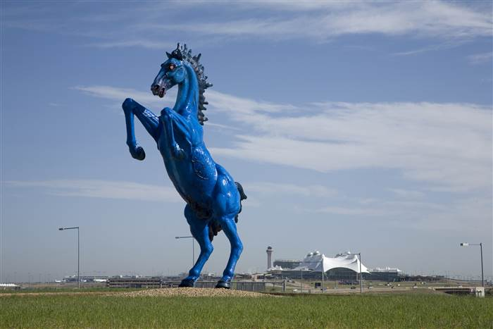 Another view of the Blue Mustang Statue