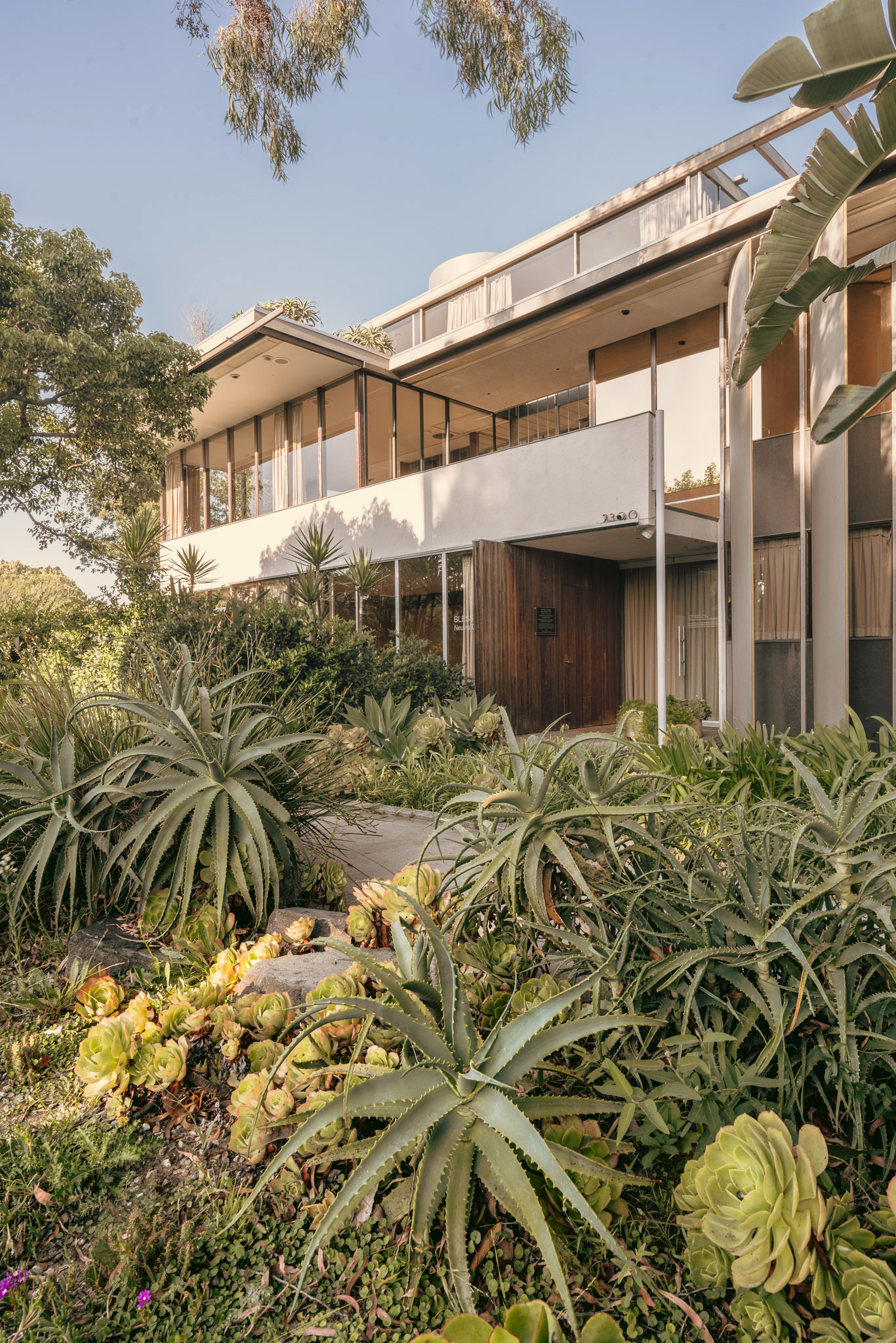 As with most of Neutra's structures, VDL II blends in with its surrounding environment.