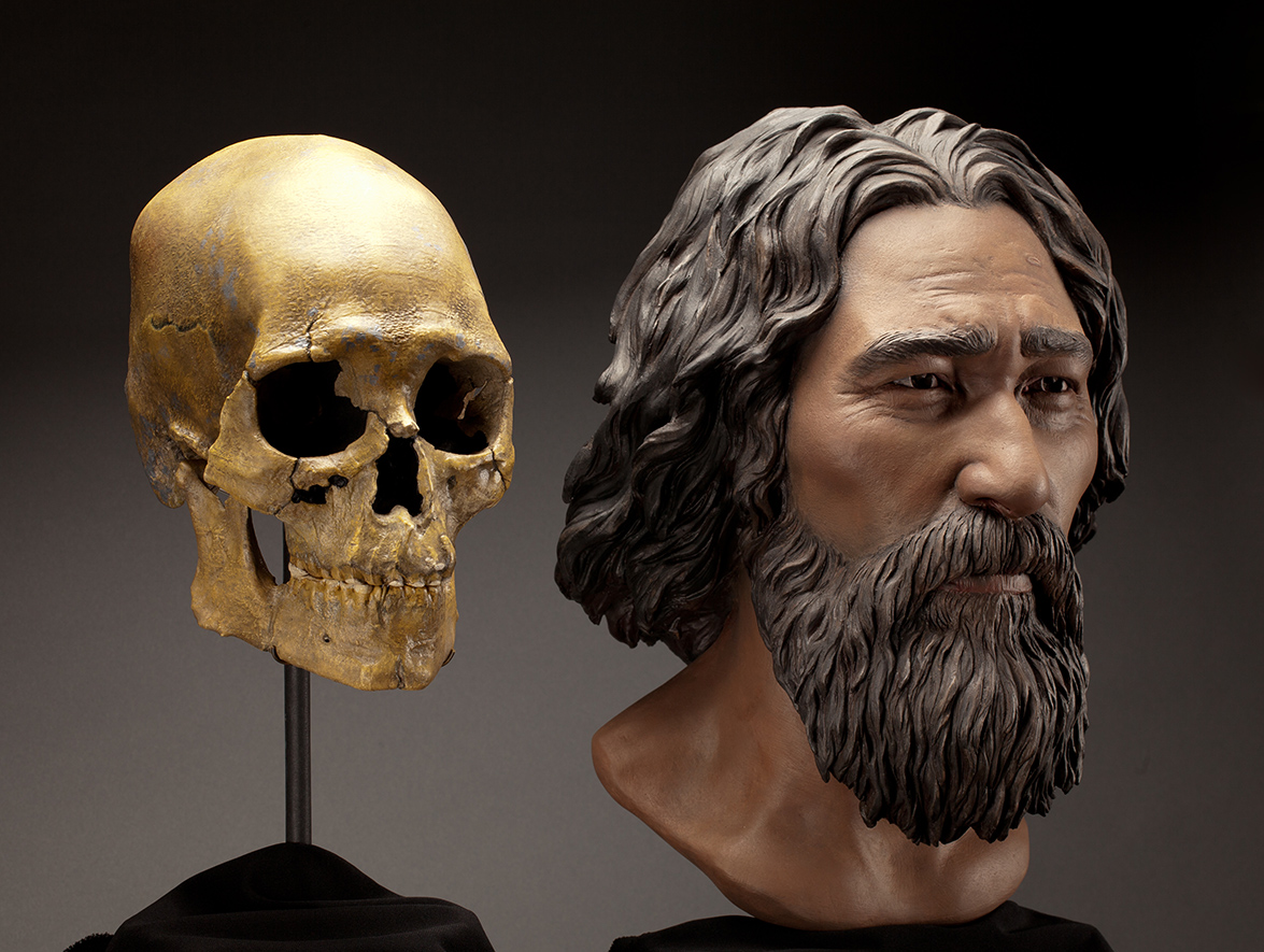 Artist creation of what Kennewick Man may have looked like