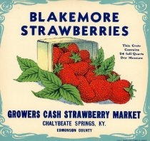Advertisement for Strawberry Market at Chalybeate Springs