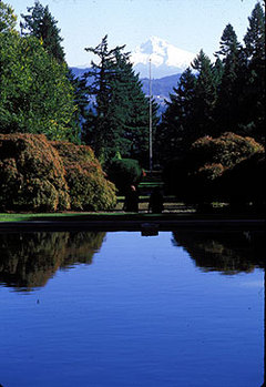 The partial garden view from the Manor House at Lewis and Clark College, overlooking Mount Hood.