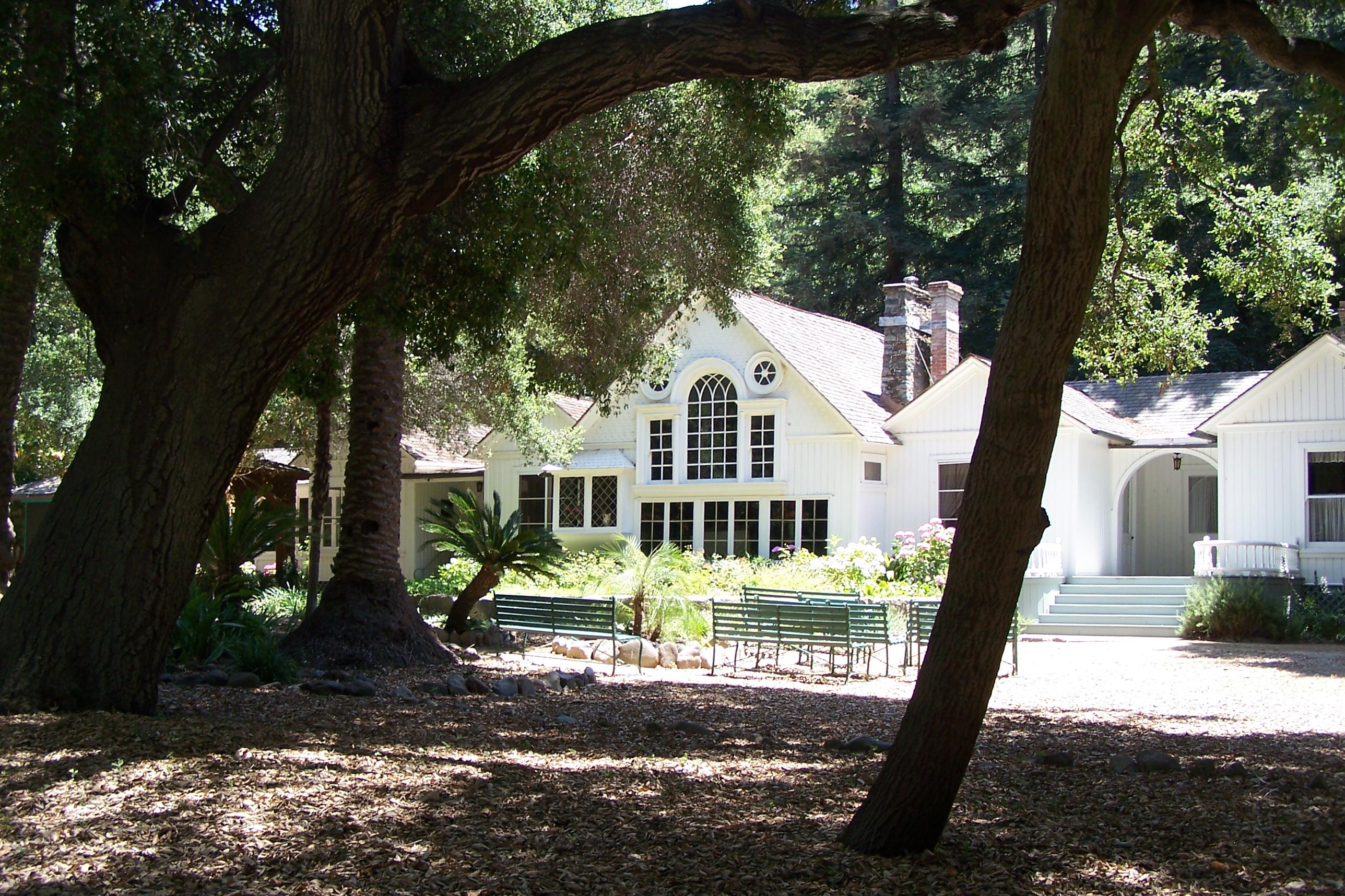 The Arden house seen through the resident oak trees.