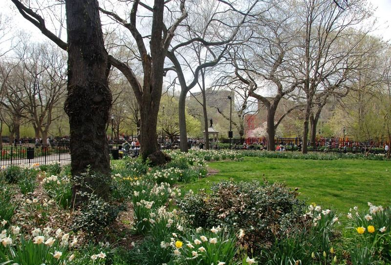 Tomkins Square Park (image from NYC Parks)