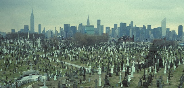 Overview of calvary cemetery (http://untappedcities.com/)