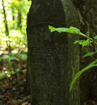 """""""This gravestone marks the resting place of Elsie M. McComas, who died in 1909, three months before reaching her second birthday.""""  Source: http://www.wvgazettemail.com/News/201310050077#sthash.TUMH6aRV.dpuf"""