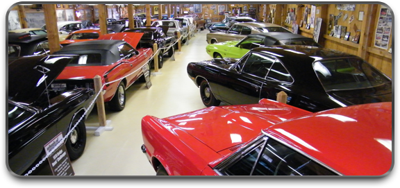 View of some the cars on display, many of which are muscle cars