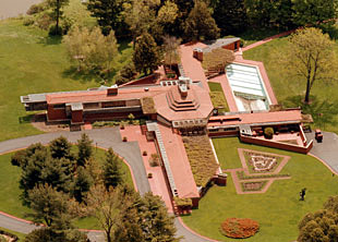 Aerial view of the plantation
