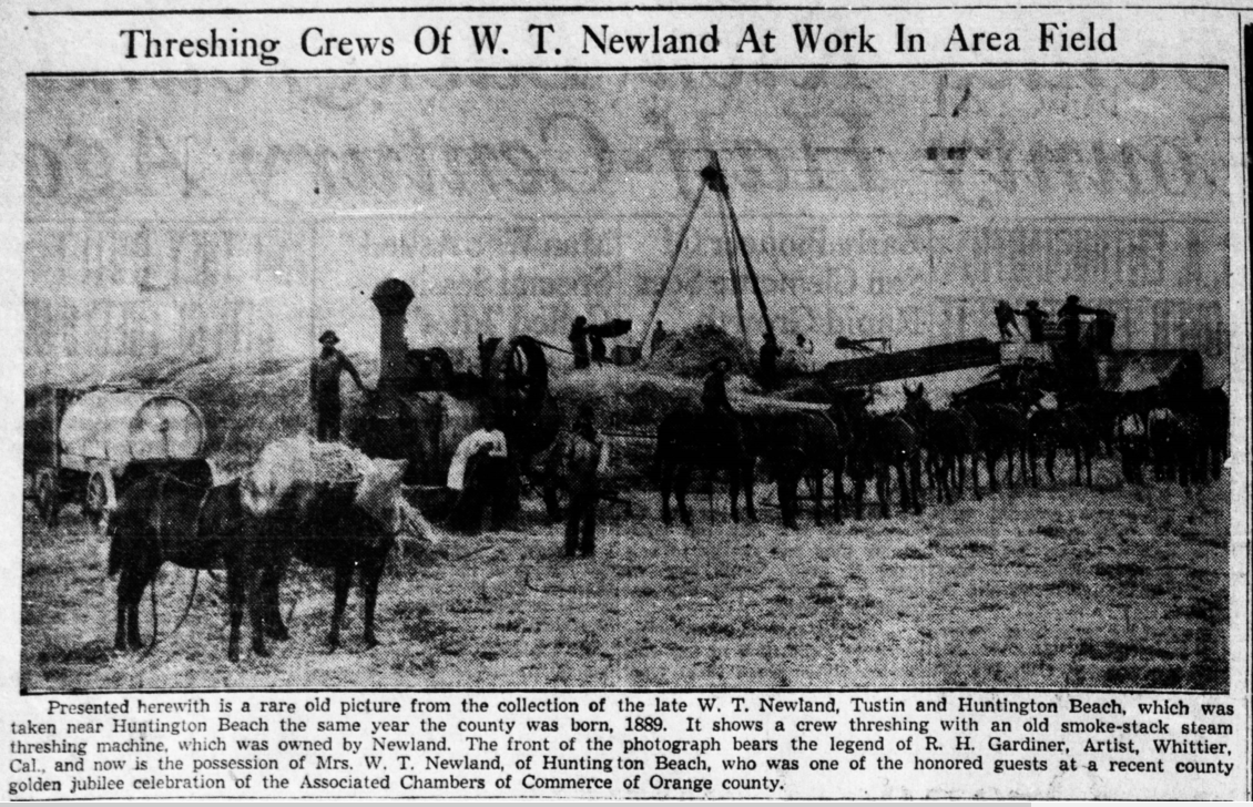 A threshing crew on the Newland rancho, circa 1889. Source: Santa Ana Register, November 22, 1939.