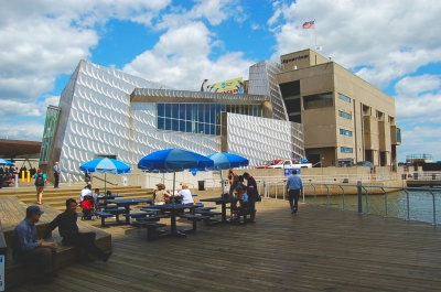 The New England Aquarium (image from bestof.com)