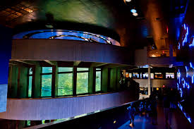The New England Aquarium's Giant Ocean Tank (image from The New England Aquarium)