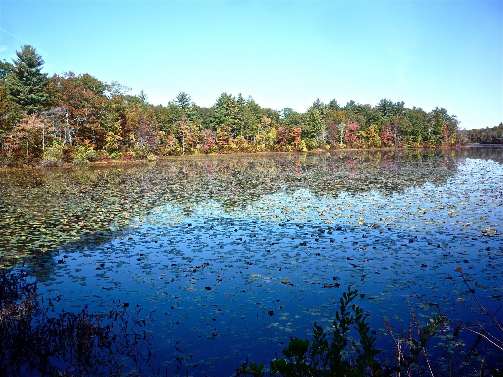 "Leach Pond. (""Ames Mansion, Borderland State Park -- NRHP Travel Itinerary,"" The Thrifty New England Traveler.)"
