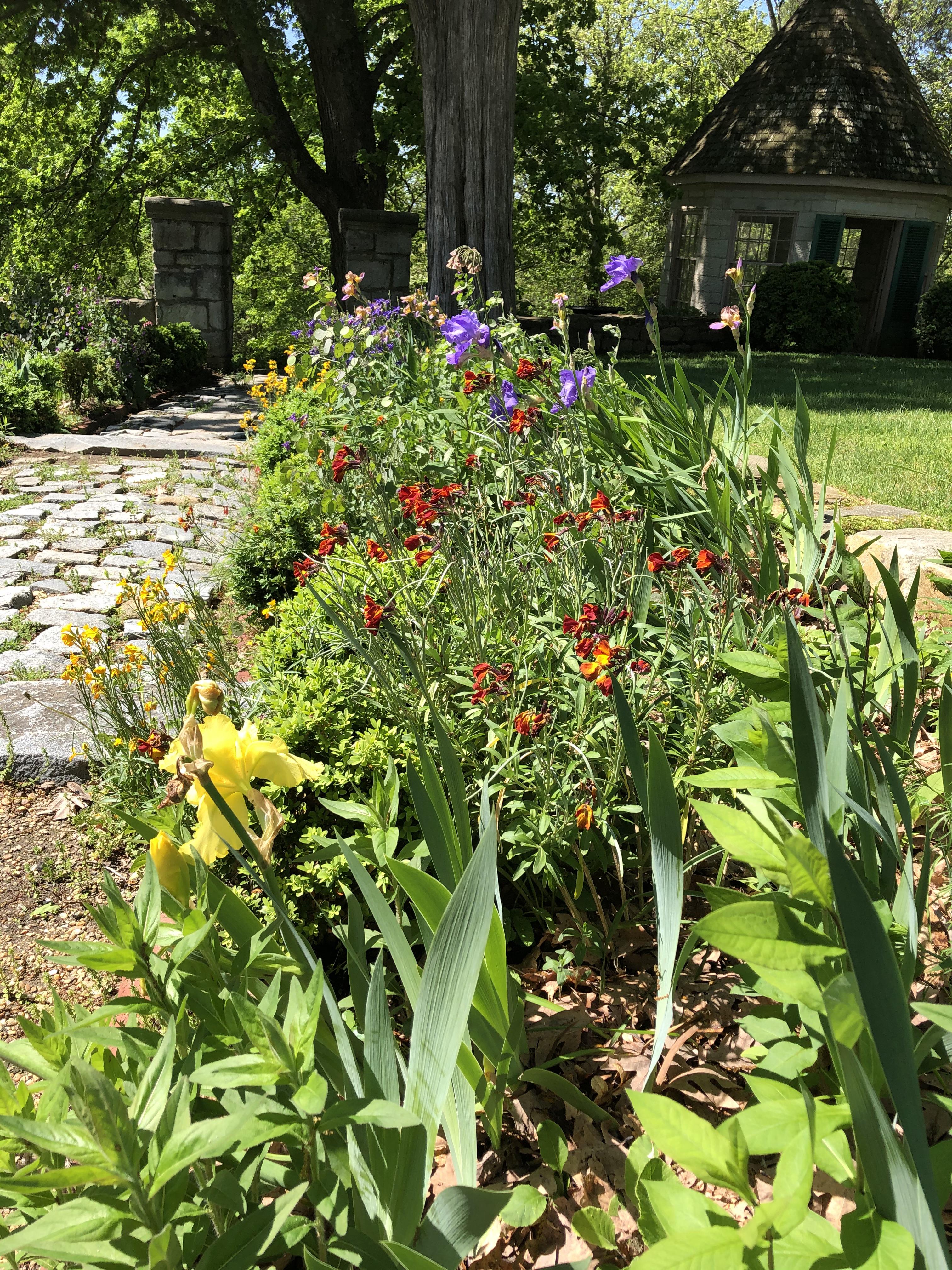 Long Walk flower beds
