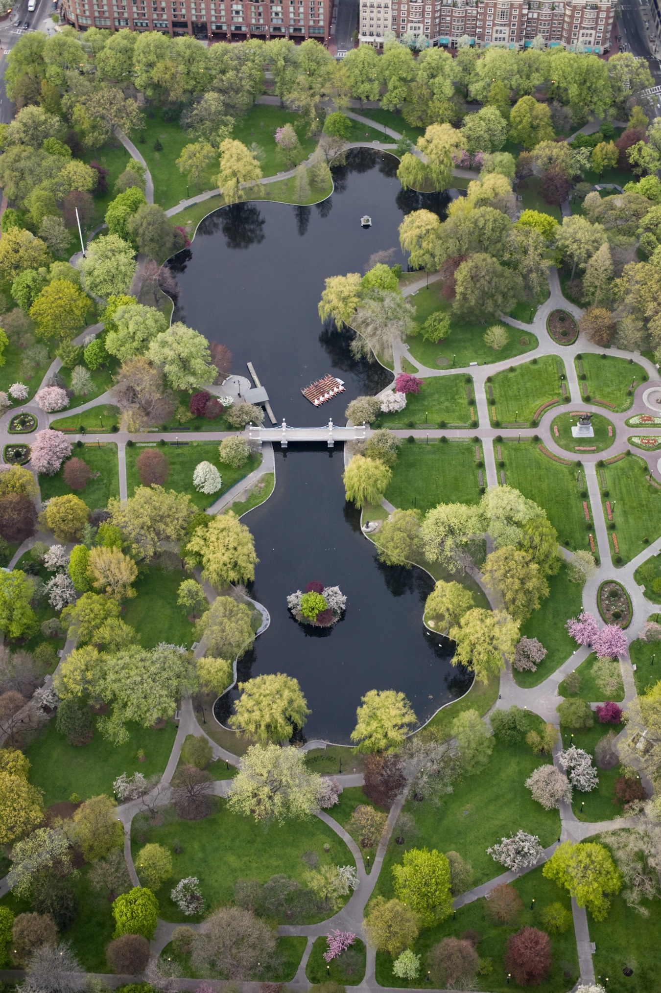 Aerial view of the garden (image from the Friends of the Public Garden)
