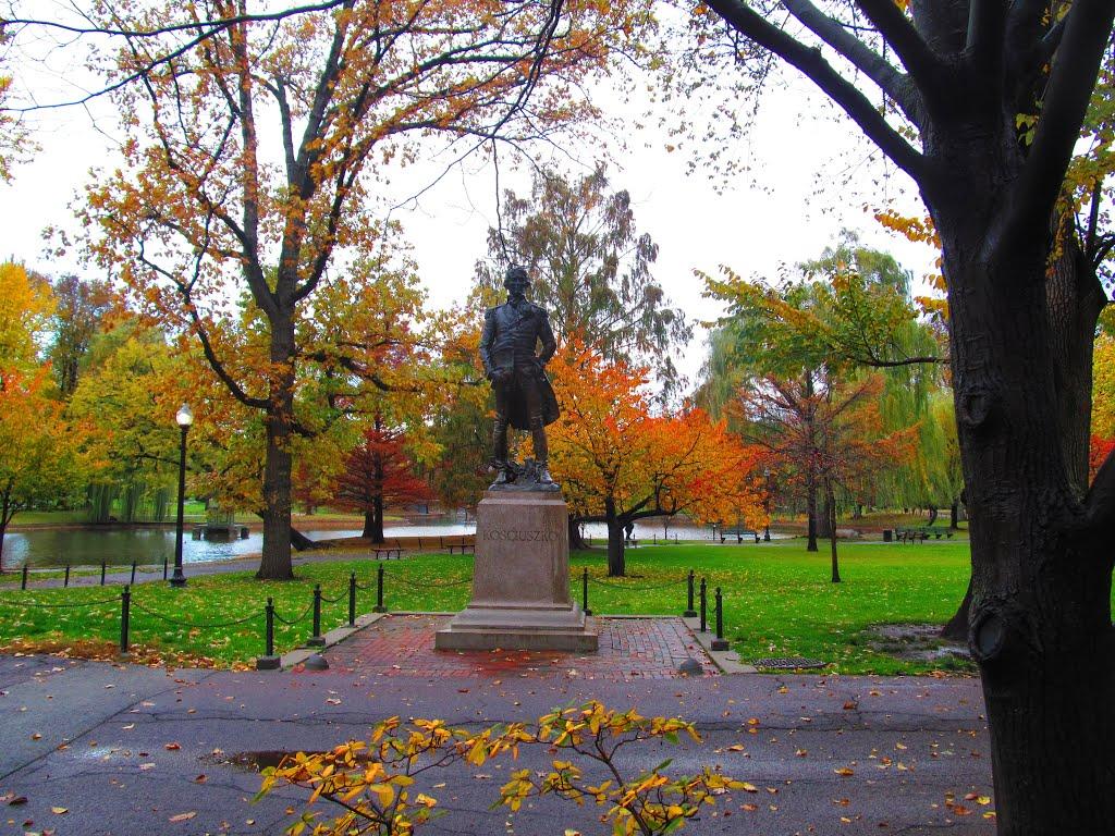 Statue of Tadeusz Kosciuszko (image from Google Maps)