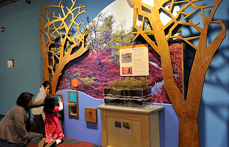 Native Voices exhibit (image from The Boston Children's Museum)