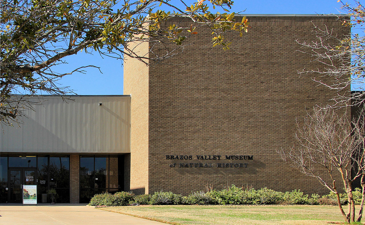 Originally founded in 1961, the Brazos Valley Museum of Natural History is a science and natural and cultural history museum.