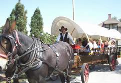 Wagon Rides