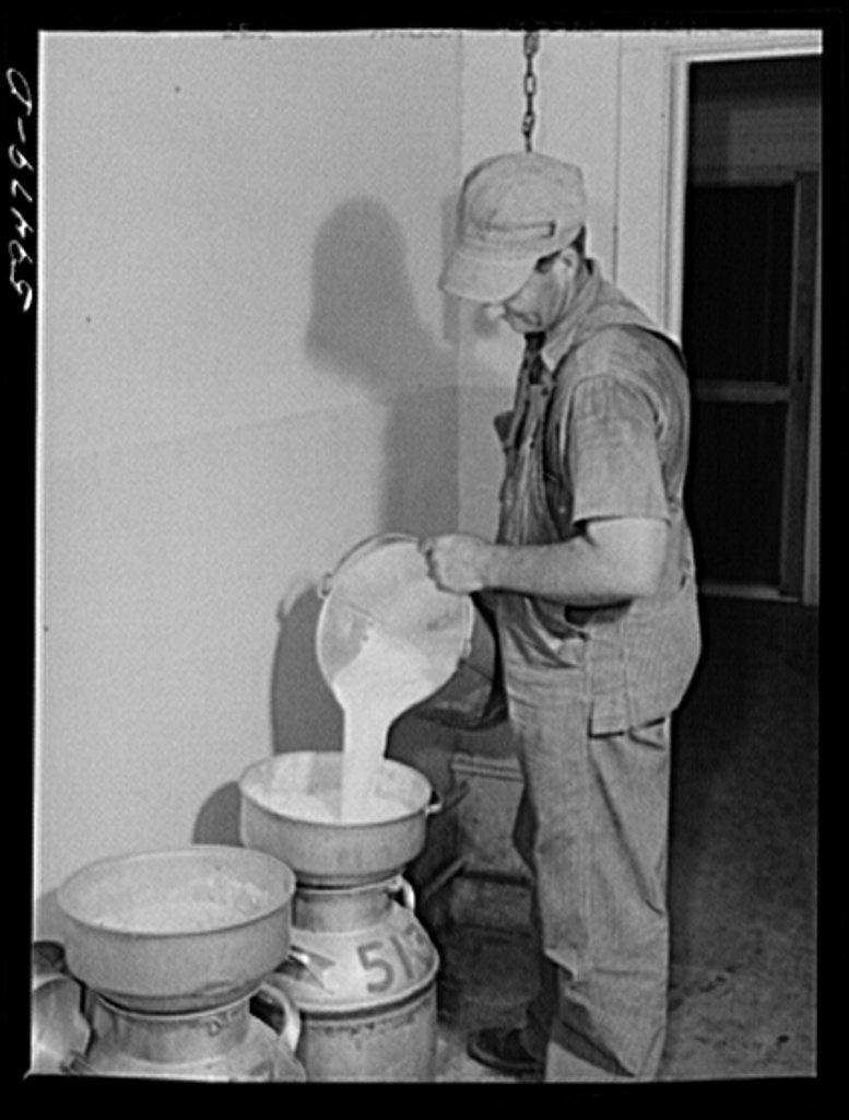 An employee of Two River pouring milk into a canister to be processed and pasturized.