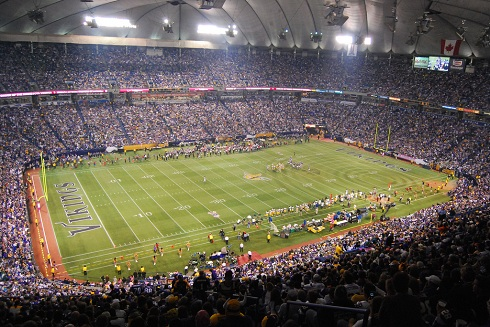 Vikings Football Field in the Metrodome