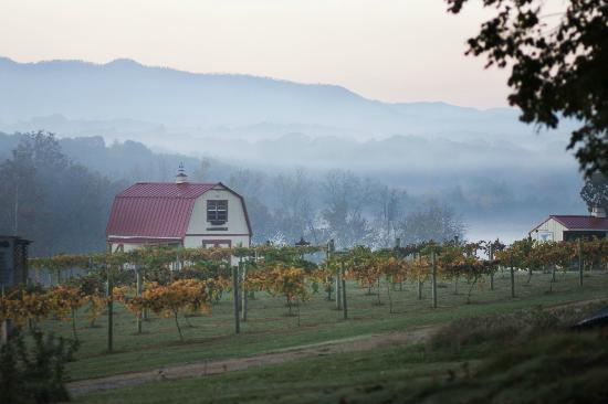 Blue Goose Farm and Vineyards is a family-run winery in Maryville, Tennessee in the valley of the Great Smoky Mountains.