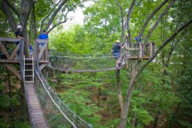 Tree Canopy Walk (image from EcoTarium)