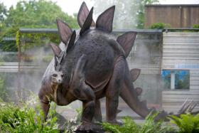 Siegfried the Stegosaurus (image from EcoTarium)