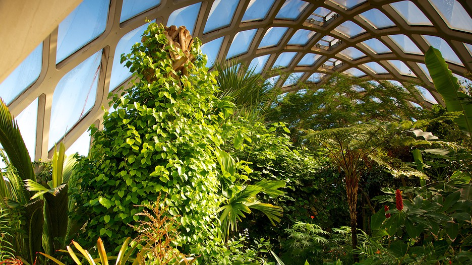Inside the conservatory (image from Expedia)