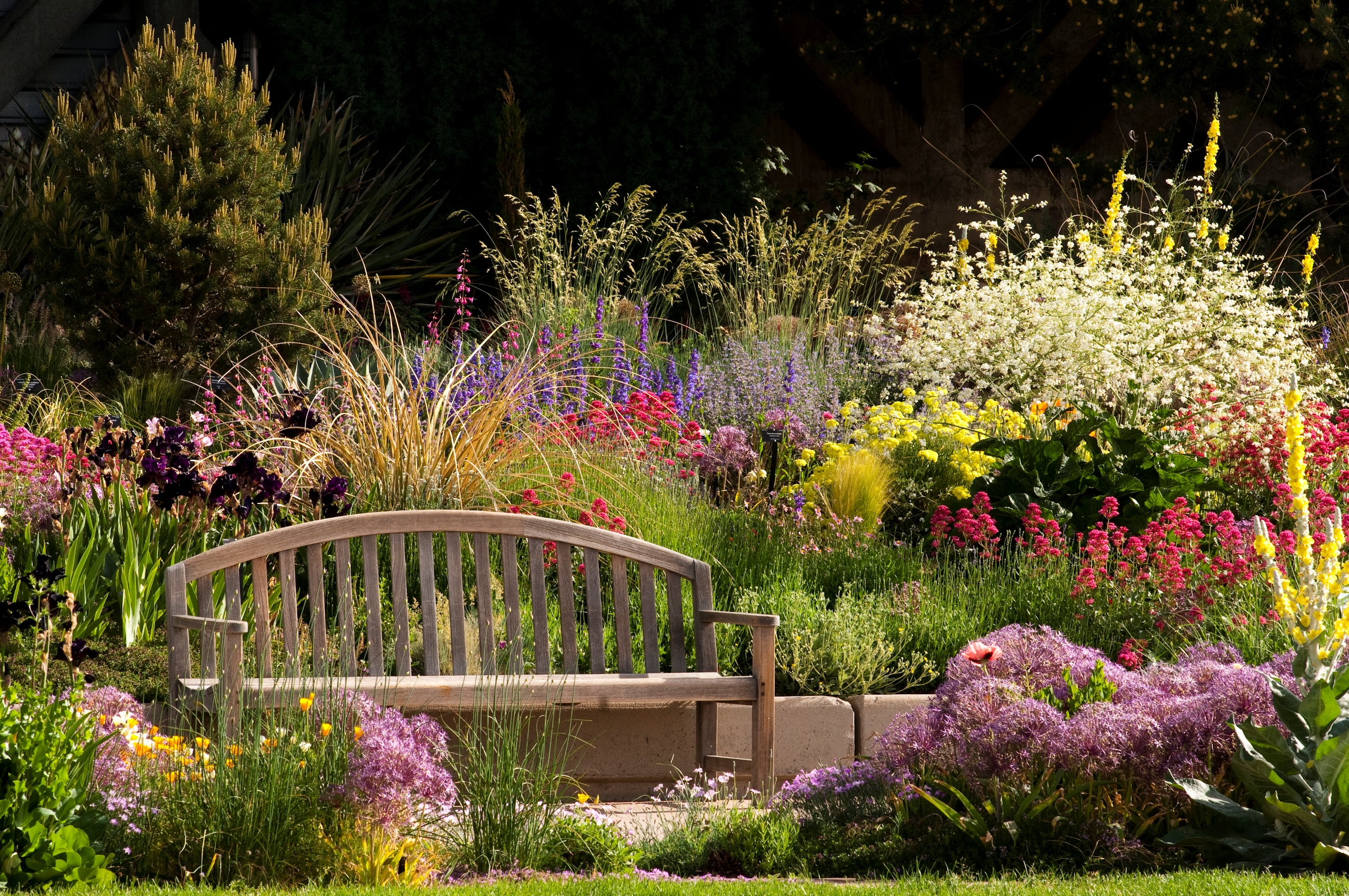 "Drought-tolerant ""Smart Garden"" (image from Denver Water Blog)"