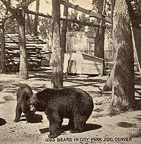 Historic Bear Mountain, the zoo's oldest exhibit (image from the Denver Zoo)