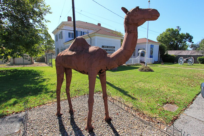 In front of the Museum is a sculpture of a camel in honor of the failed U.S. Camel Corps that was based in the area. Image obtained from Allard Real Estate.