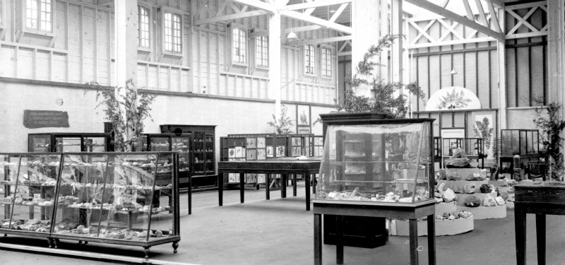 Exhibit photograph from the early decades of the museum's operation. Photo courtesy of the San Diego Natural History Museum.
