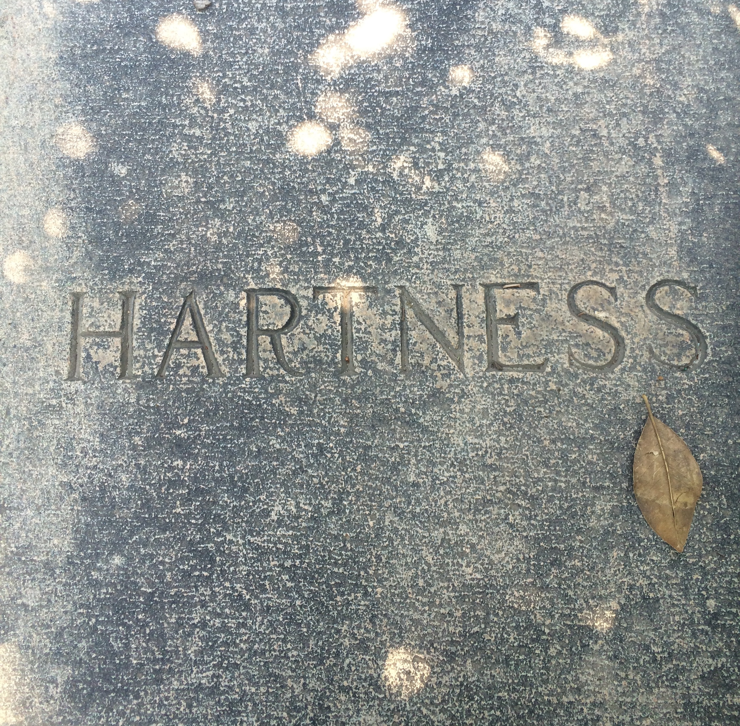 """The name """"Hartness"""" is inscribed in the sidewalk directly in front of this house. This must have been added sometime between 1928 and 1969."""