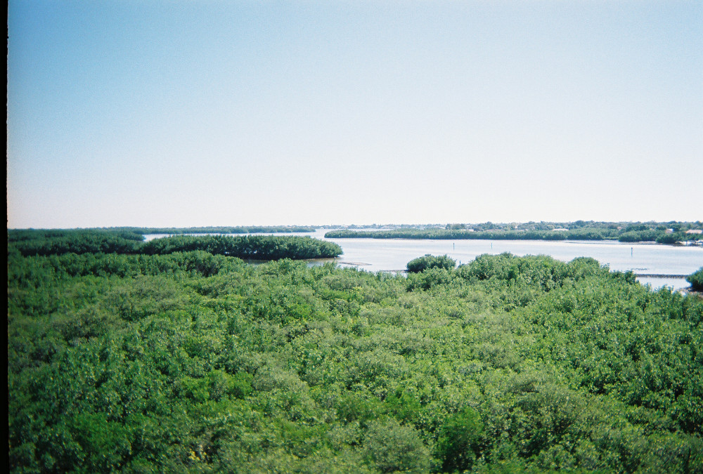 Weedon Island as seen from the observation found on the island